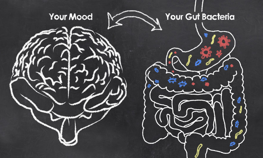 The Cause of Depression May Be Hidden in Your Gut, Not Your Brain