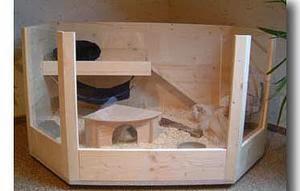 nadobudni kunci malo o kuncih. Black Bedroom Furniture Sets. Home Design Ideas