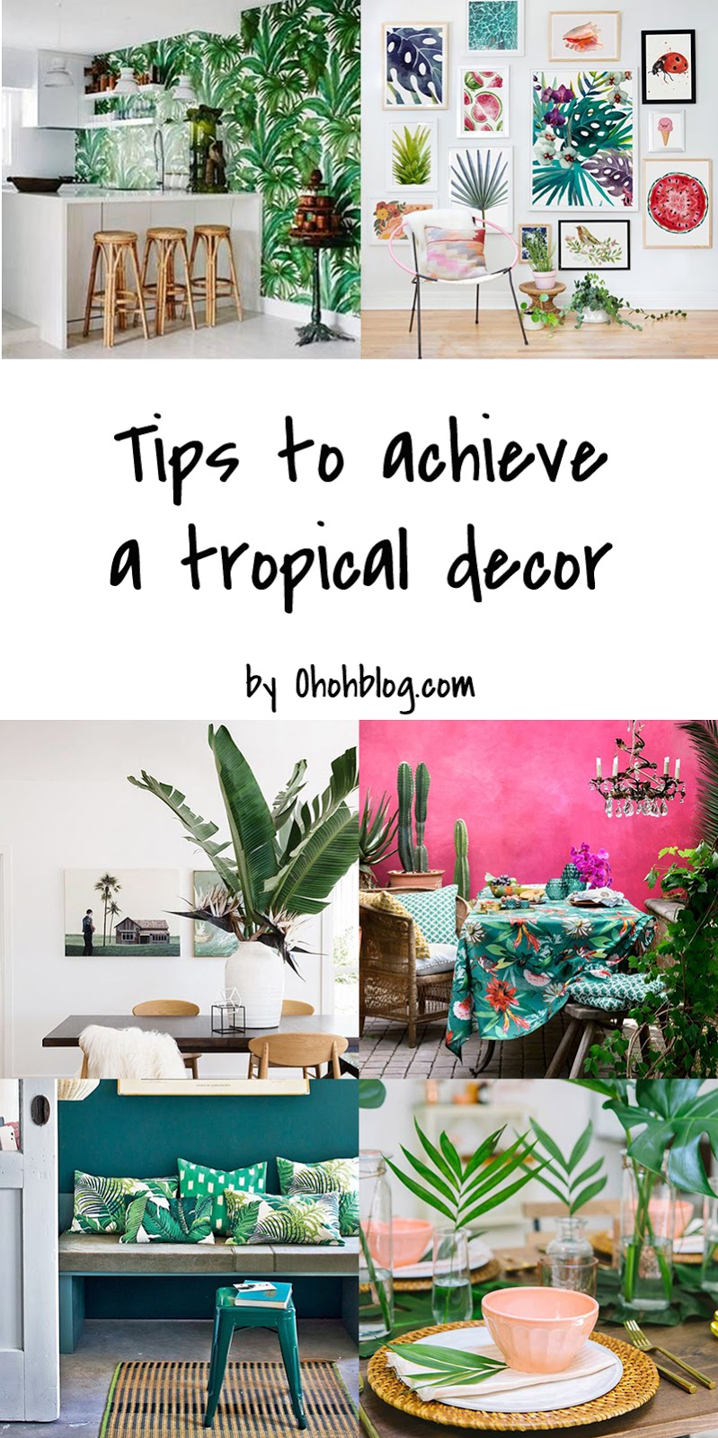 this post contain sponsored links read more about our privacy policy here - Tropical Decor