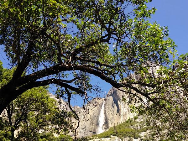 Yosemite, premier parc du périple de 10 semaines dans l'Ouest Américain