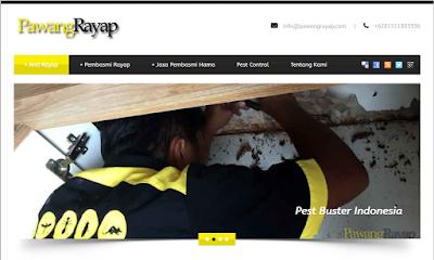 PawangRayap.com: Solusi Jitu Basmi Hama Rayap di Rumah Anda