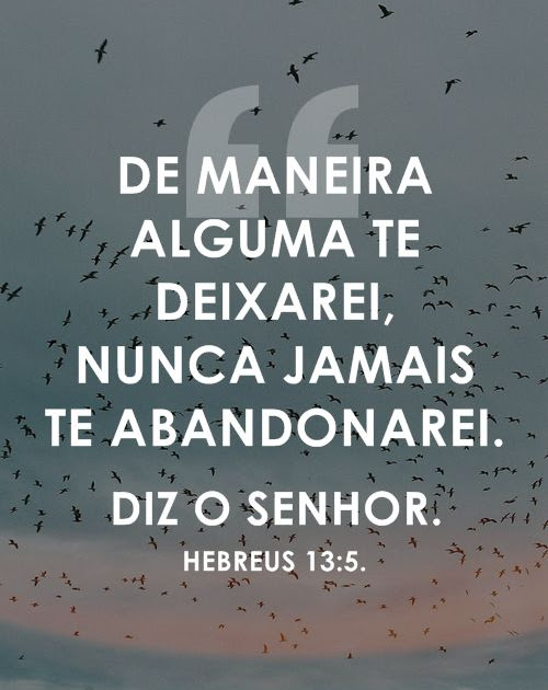 Frase do Dia || Today's Quote