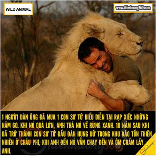 Cứu vật vật trả ơn - Xin đừng giết hại động vật: