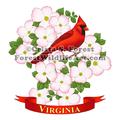 http://pixels.com/featured/virginia-state-bird-cardinal-and-flowering-dogwood-crista-forest.html