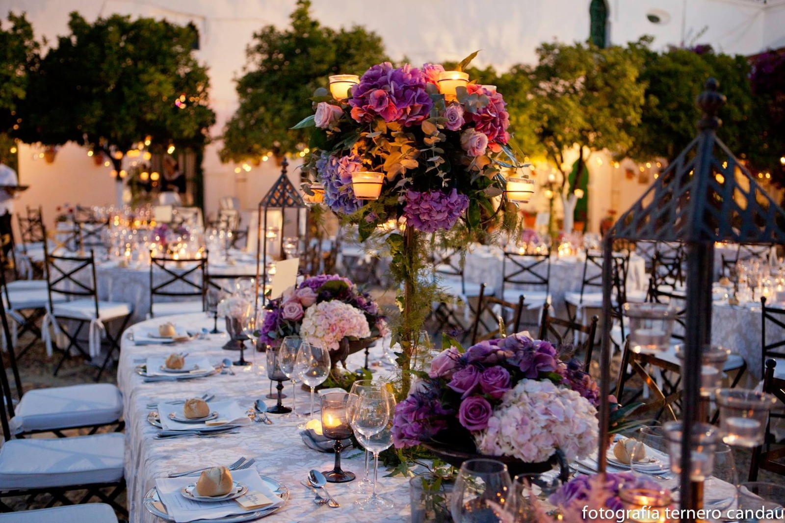 cártamo flores. floristería. decoración de bodas y eventos en
