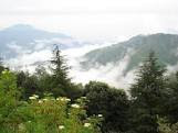 Image of Chail