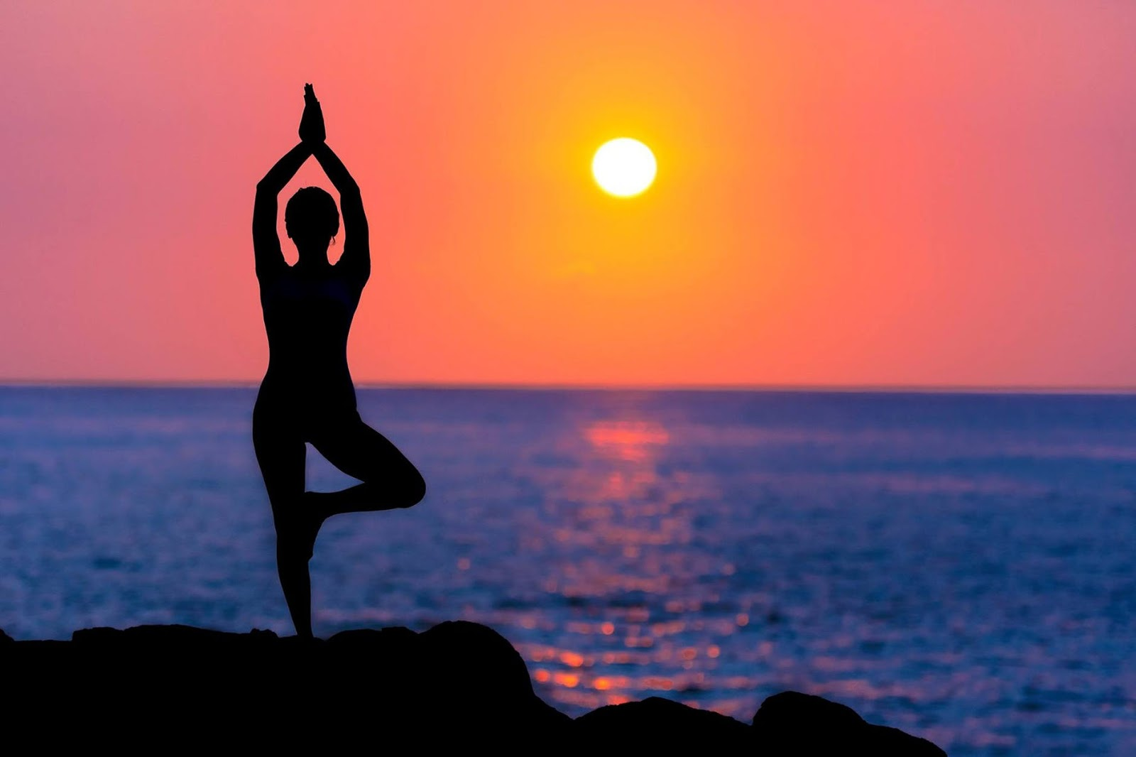 what is the importance of yoga in our life