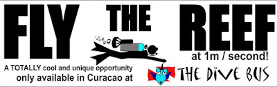 http://www.thedivebus.com/dive-the-best-of-curacao/guided-dives-explore-us-prepare-amazed/fly-the-reef/