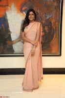 Eesha Rebba in beautiful peach saree at Darshakudu pre release ~  Exclusive Celebrities Galleries 072.JPG