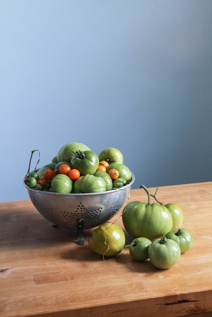 tomatoes, garden harvest, autumn, green tomatoes, Anne Butera, My Giant Strawberry