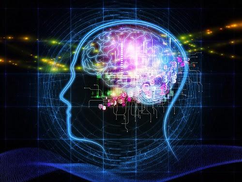 Wie wirkt sich das digitale Zeitalter auf das Gehirn aus?