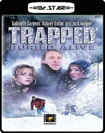 Download Trapped: Buried Alive 2002 Dual Audio DVDRip 304mb