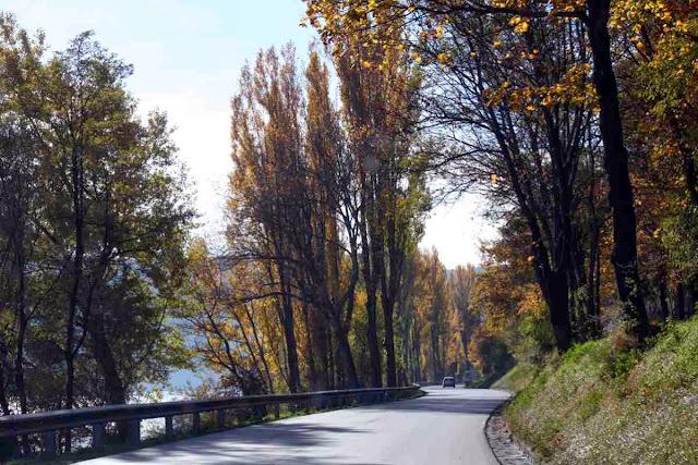 Herbstlicher Spätnachmittag an der Donau © Copyright Monika Fuchs, TravelWorldOnline