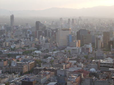 Contaminación de la ciudad, en parte debido a la quema de combustibles por automóviles