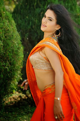 SOUTH INDIAN ACTRESS wallpapers in HD: Kavya Sing Hot in ...