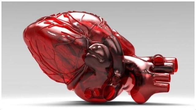 ialah salah satu bab terpenting dalam badan kita Sekilas Tentang Cangkok Jantung