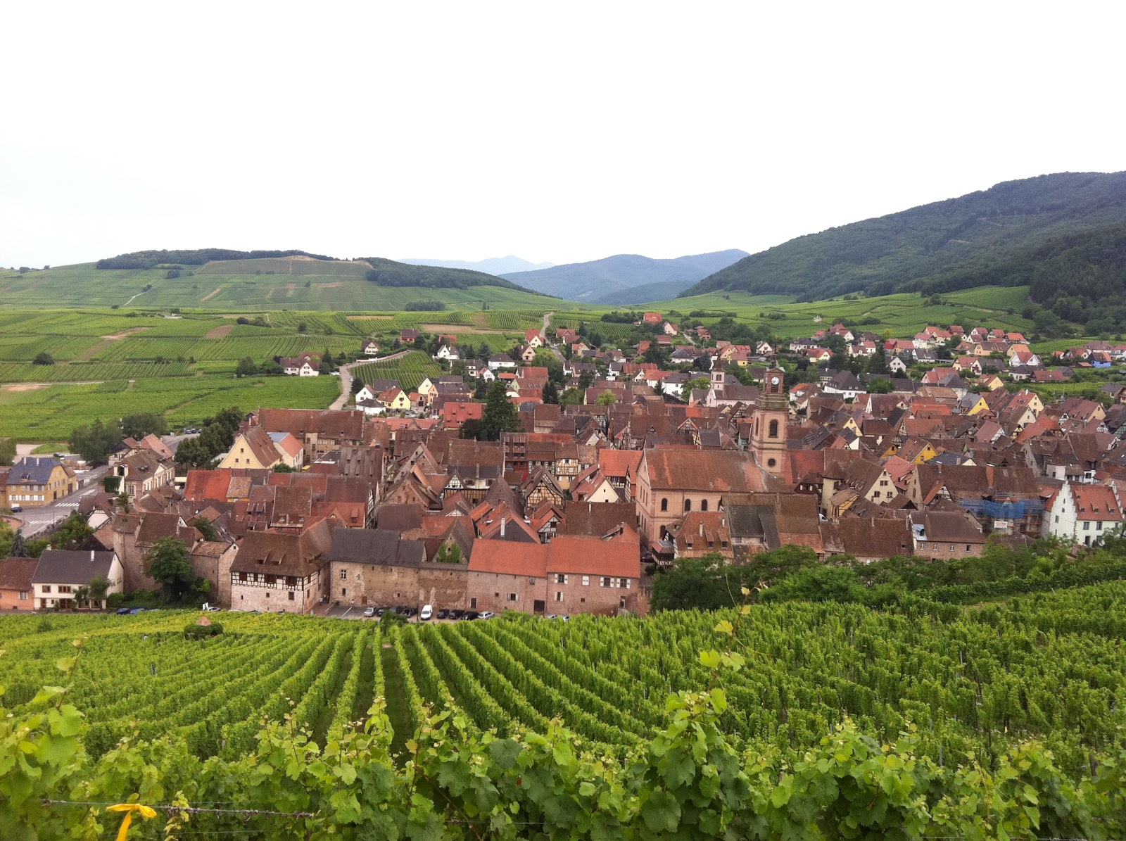 Dreamy Food Dimensions Through Soledad: Alsace Wine Region &