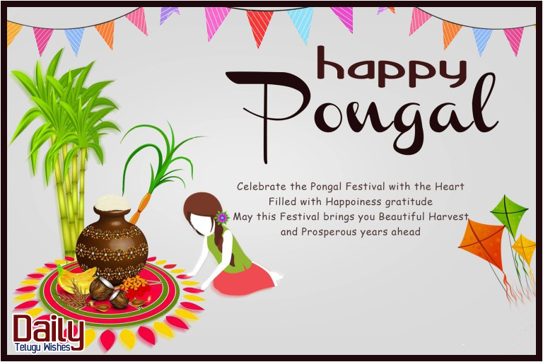 Best pongal wishes and greetings english quotations 2018 best pongal wishes and greetings english quotations 2018 m4hsunfo