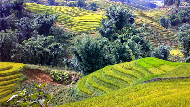 Typical Types of Tourism in Sapa 2