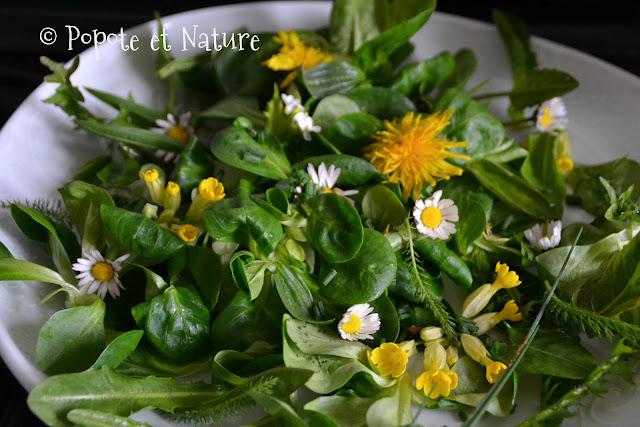 salade aux fleurs sauvages © Popote et Nature