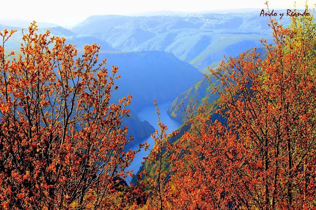 Mirador de Cabezoas, cañones del río Sil en la Ribera Sacra, Orense,