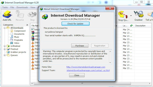 Internet Download Manager 6.28 Build 1 - Web Free Download
