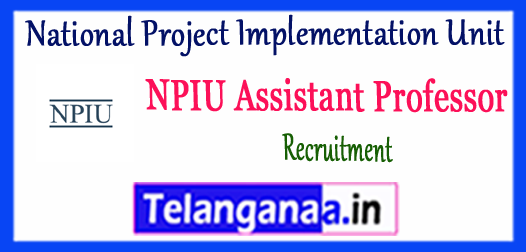 NPIU National Project Implementation Unit Assistant Professor Recruitment 2017 Application