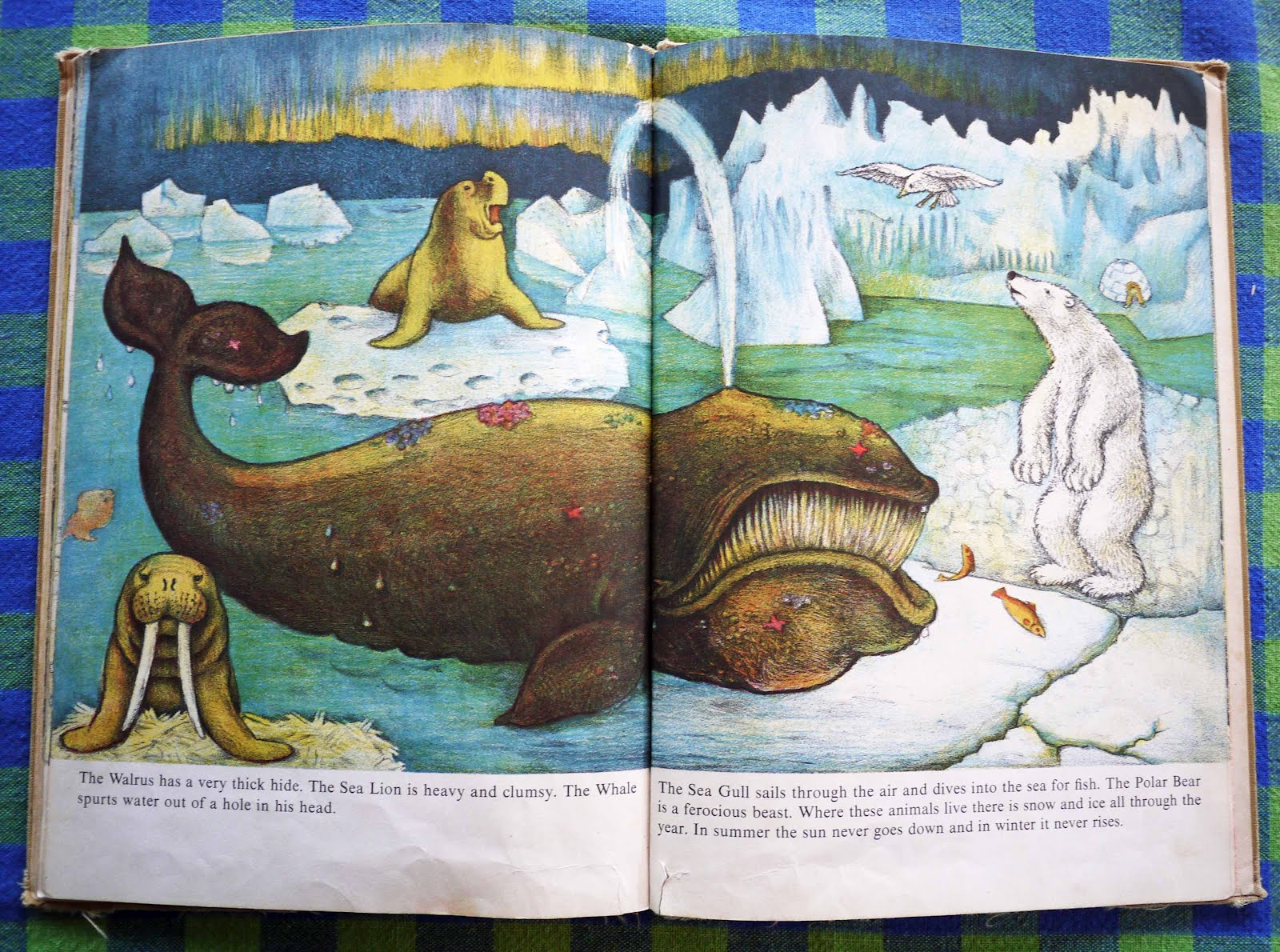 Vintage Kids' Books My Kid Loves: Animals Everywhere