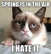 Hate spring