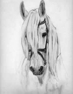 Dibujo a lápiz de un caballo