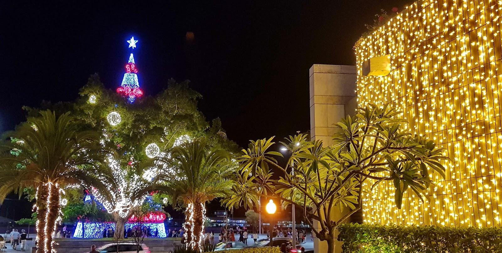 luzes que encantam o Natal