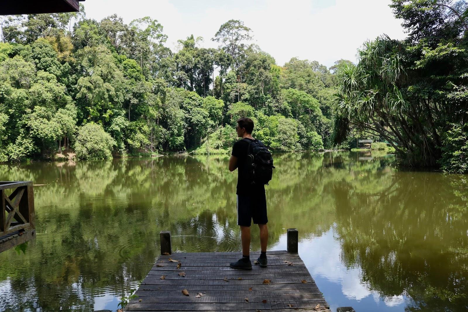 Rainforest Discovery Centre, Sepilok, Malaysia