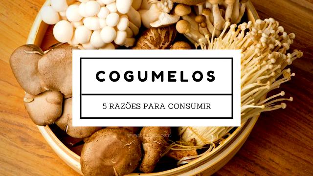 cogumelos-razoes-consumir-beneficios