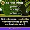 Tree in Hindi - पेड़ो की जानकारी और 26 रोचक तथ्य