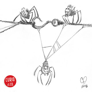 Pencil drawing of concerned spiders on a taut rope - illustration and design by Cesare Asaro - Curio & Co. (Curio and Co. OG - www.curioandco.com)