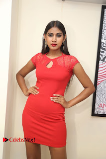 Actress Model Honey Pictures at Anoos Franchise Salon and Clinic Launch  0053.JPG