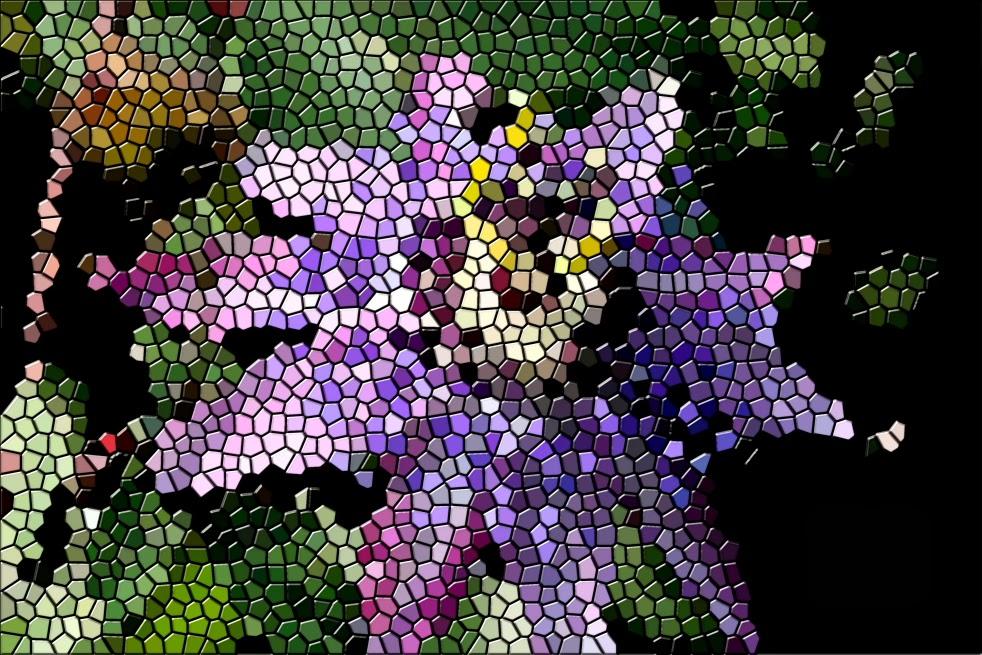 fotografía digital, creativa, mosaicos, arte  digital, fotos diferentes,