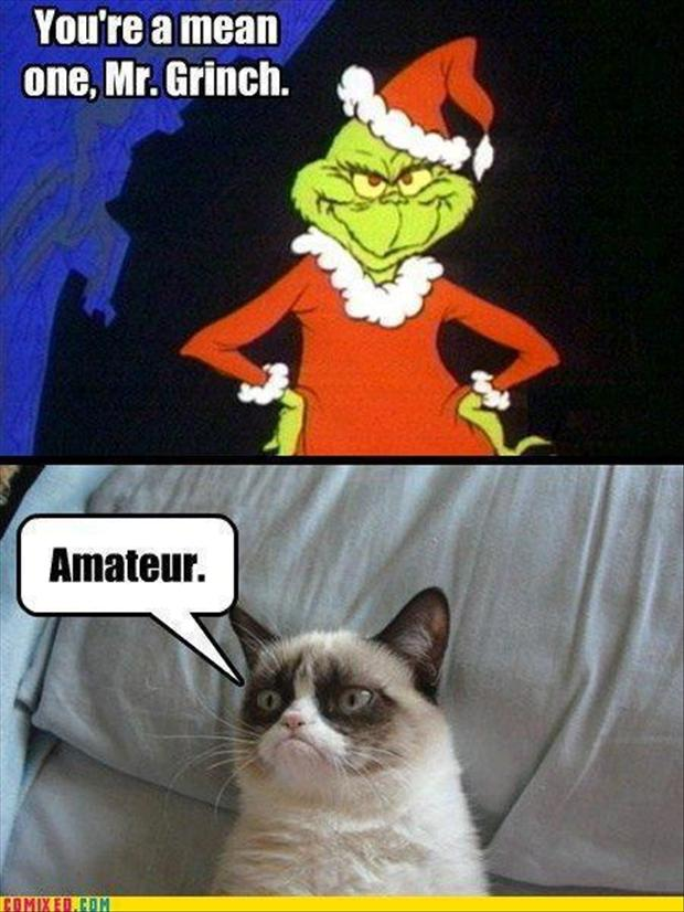 Funny Grumpy Cat Christmas Memes.Christmas Grumpy Cat Meme Grinch Funny Cat Pictures