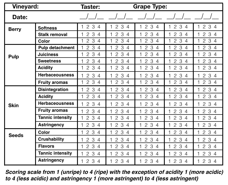 EnoViti: Berry Sensory Assessment (BSA) for Cabernet Sauvignon