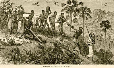 Slaver's revenge