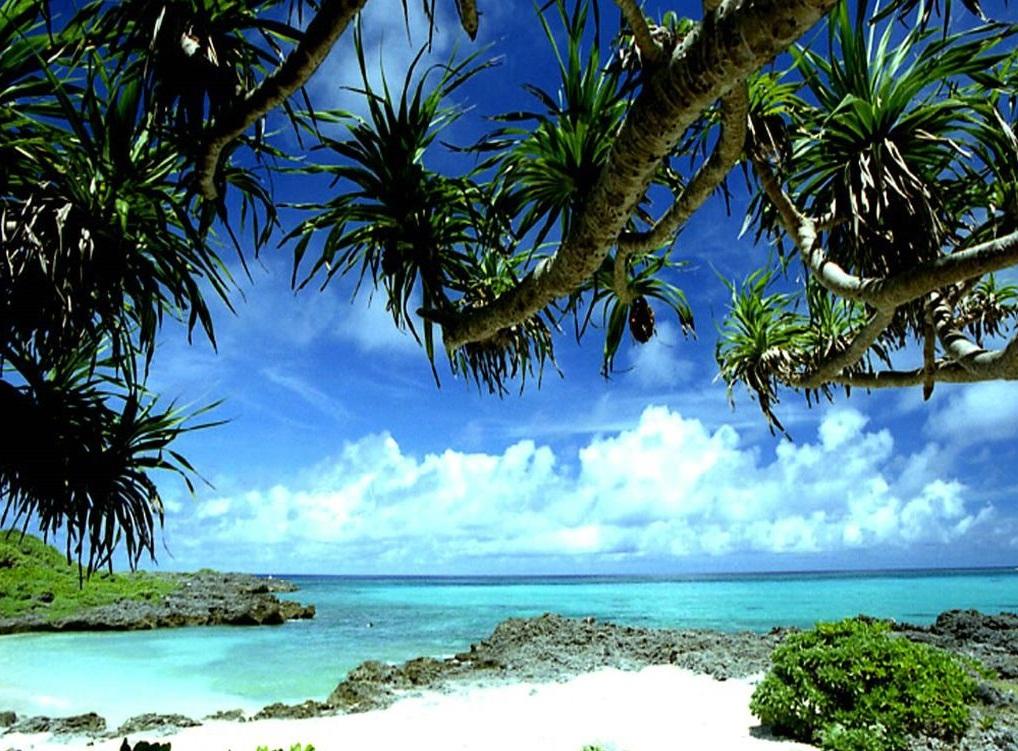 Tropical Island Beach Ambience Sound: Tourism: Tropical Beaches