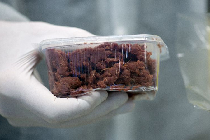 Penelitian US Authorities Paves Way to Get Lab Meat on Plates