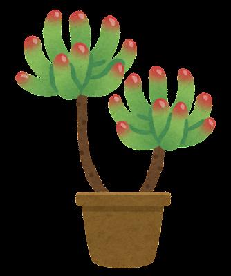 乙女心のイラスト(多肉植物)