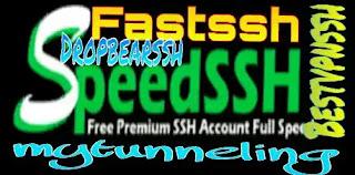 Akun SSH Gratis
