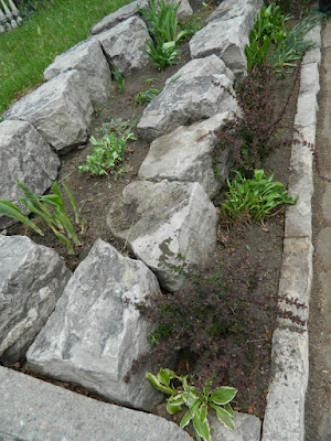 by Paul Jung Gardening Services--a Toronto Gardening Company Riverdale Front Garden Spring Cleanup After