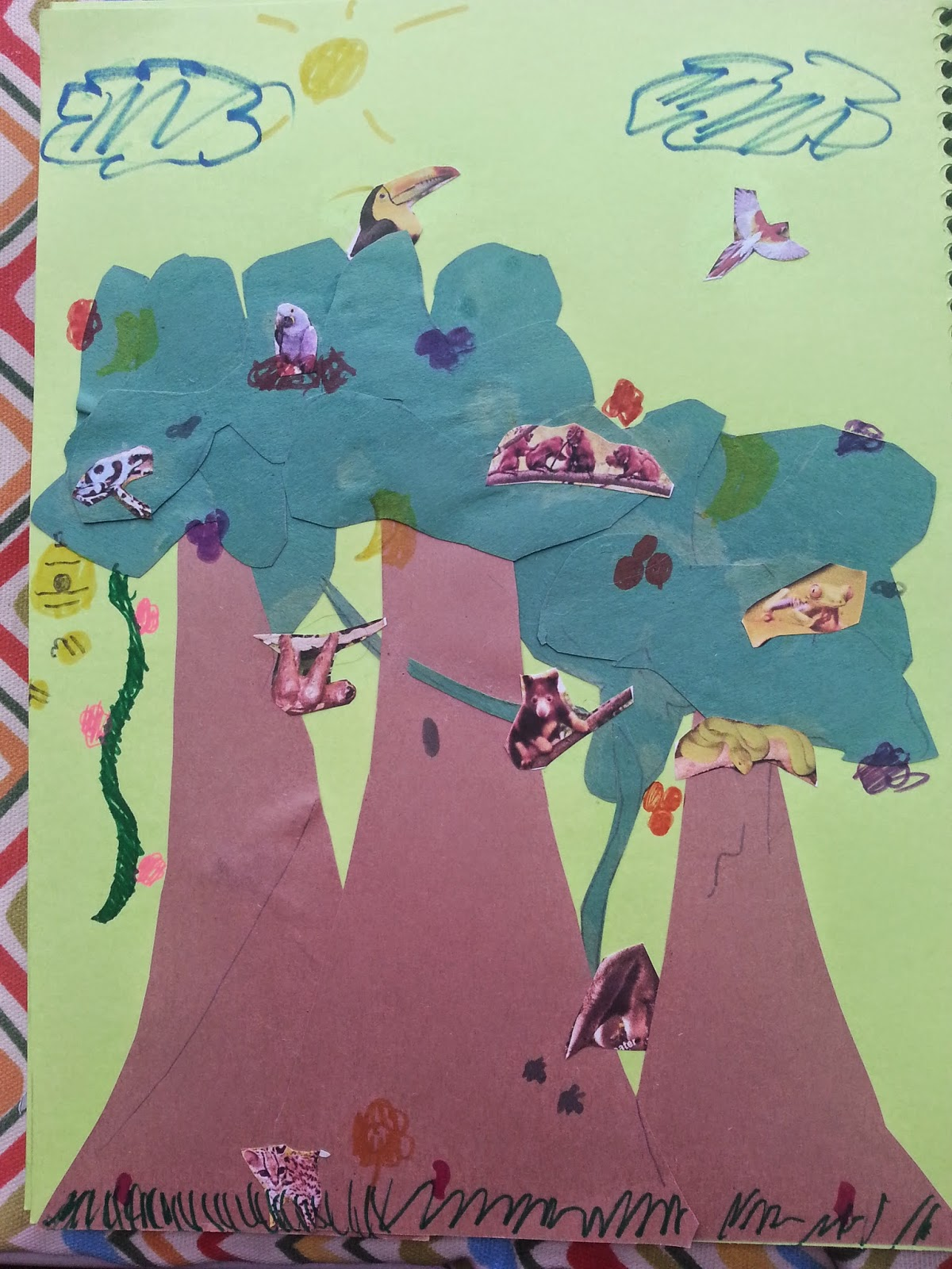 One Mama S Journey Rainforest Biome Unit