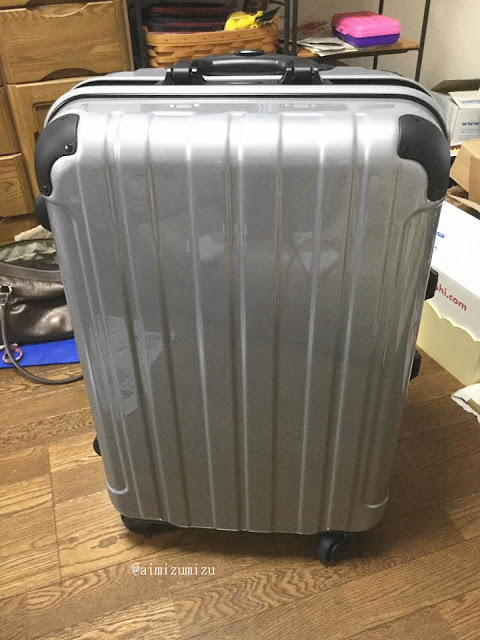 thai airways suitcase
