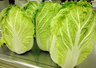 Chinese Cabbage Benefits For Health - 1