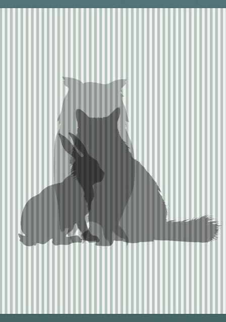 kara makas / arka kapak