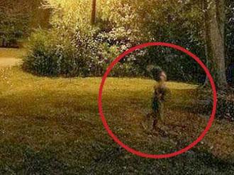 Extraña criatura es fotografiada corriendo por un jardín por la noche